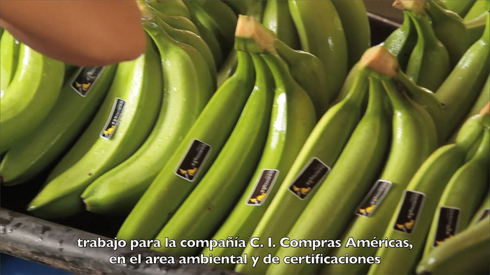 With a QR code strategy, website development and compelling videos, HexaGroup helped differentiate the nonprofit Dominique Bananas from the competition.